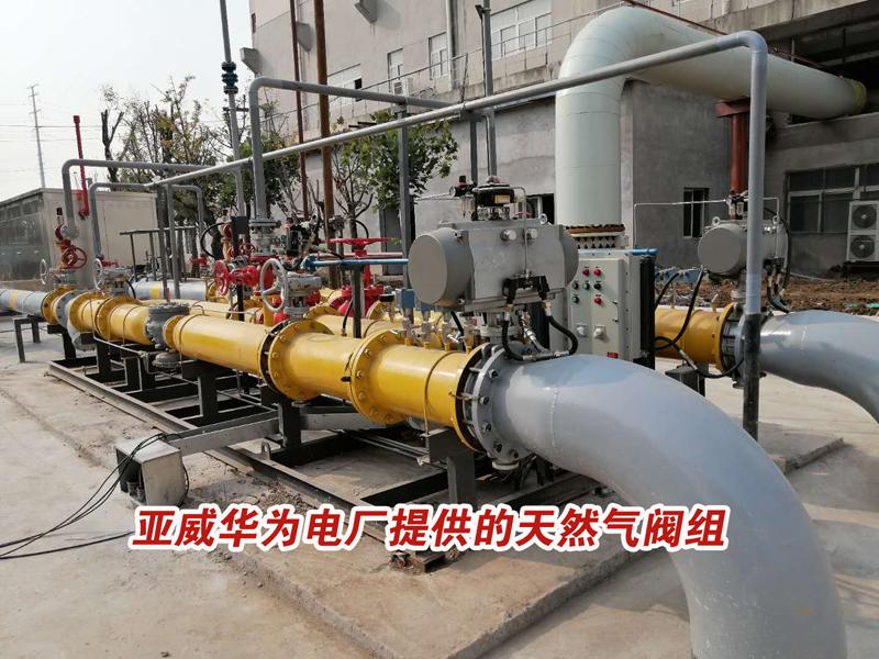 为电厂提供天然气亚搏在线登录站