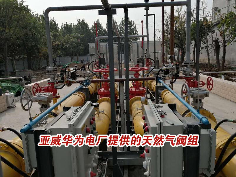 亚威华为电厂提供的天然气阀组