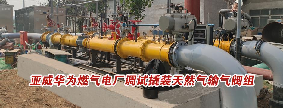 撬装天然气输气阀组