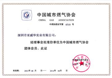 中国城市亚搏体育网站协会证书